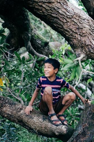 Orphan-Boy-in-Tree