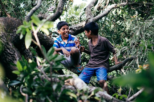 Orphan-Kids-in-Tree3